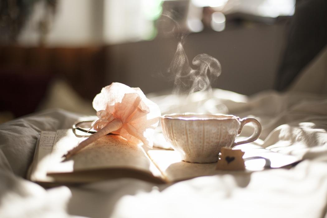 QoR8Bv1S2SEqH6UcSJCA_Tea