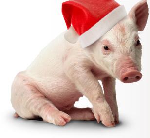 Save Lives This Christmas