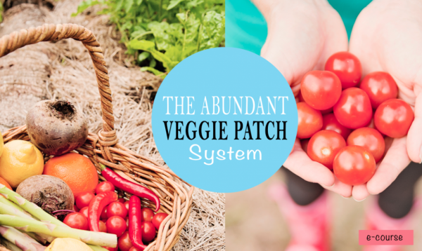The-Abundant-Veggie-Patch-System-with-Nicola-Chatham-Cherry-1024x612
