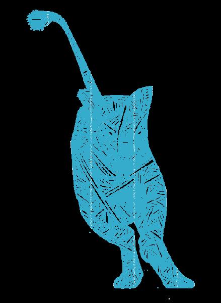 lioness-aqua